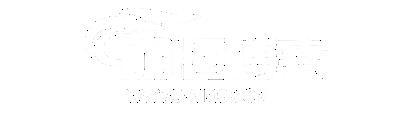 明恒的博客 - 一个技术型博客
